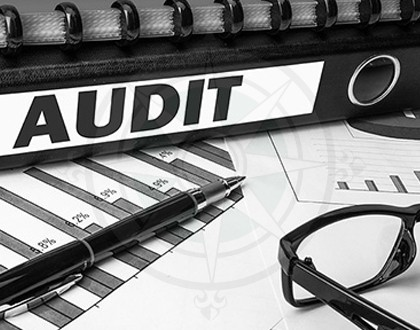Fear of getting audited is real blog by Grandview Asset Management